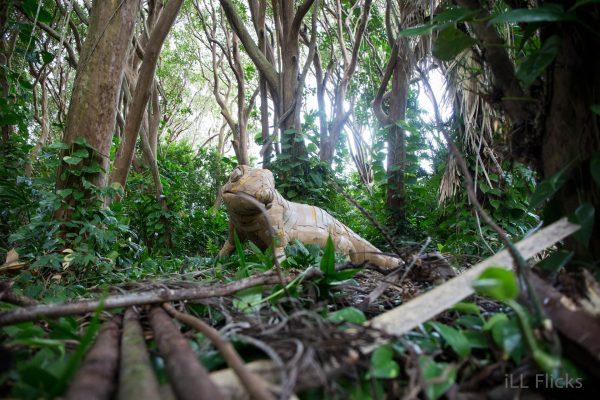 Gecko jungle final 5-35
