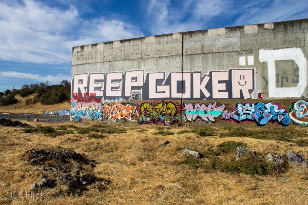 Reep Goker Jurne Steel Borg-5